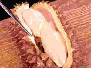 Durian Fruit - Custard Like and Very Sweet