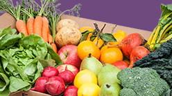 Box of Organic Veggies