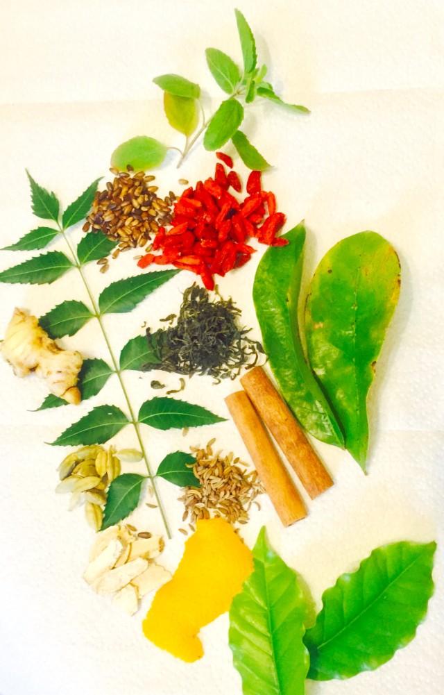 Dr. Haider's Healing Tea