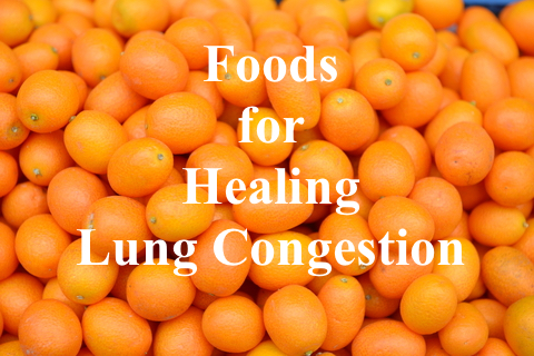 Foods for Healing Lung Congestion