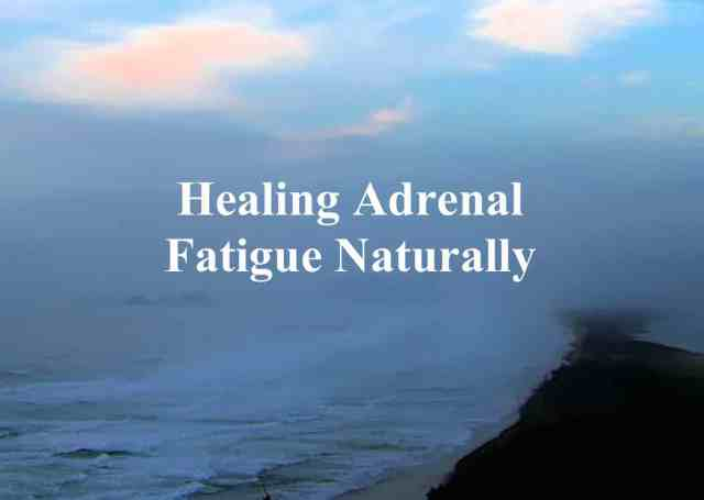 Healing Adrenal Disease