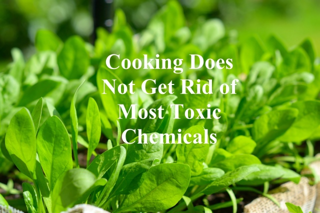 Cooking Doesn't Get Rid of Most Toxic Chemicals copy