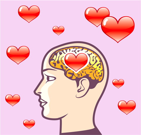 brain-and-love