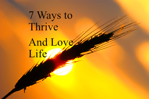 """7 Ways to Thrive and Love Life"" 1"